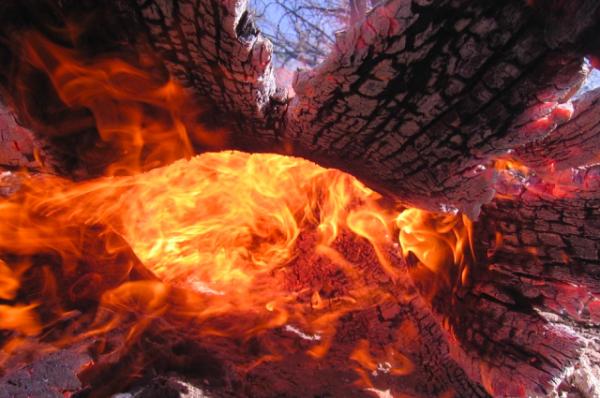 В Анталье вспыхнул сильный лесной пожар