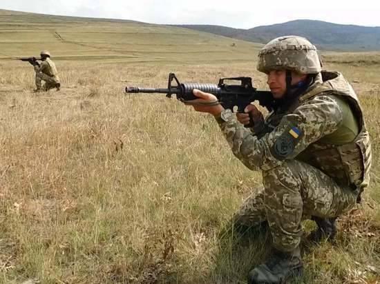 Донбасский ополченец назвал чистки ВСУ «дворцовыми интригами»