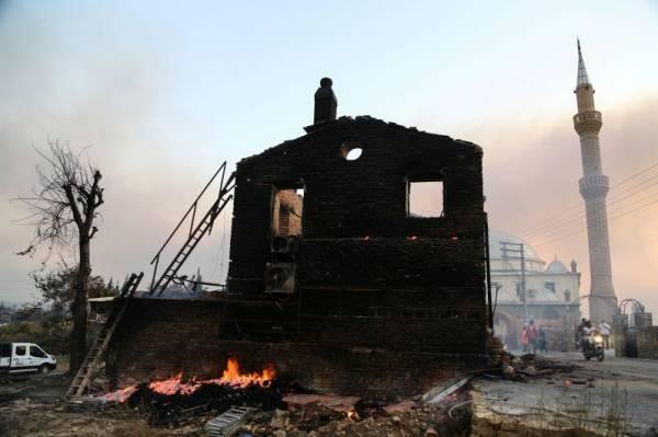 В Турции число жертв лесных пожаров выросло до четырёх
