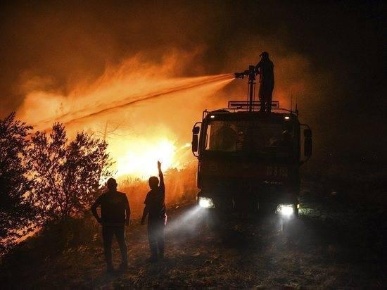В Турции назвали виновников жутких пожаров на курортах