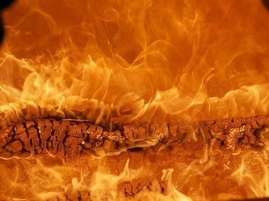 Зеленский: Украина поможет Турции в борьбе с пожарами