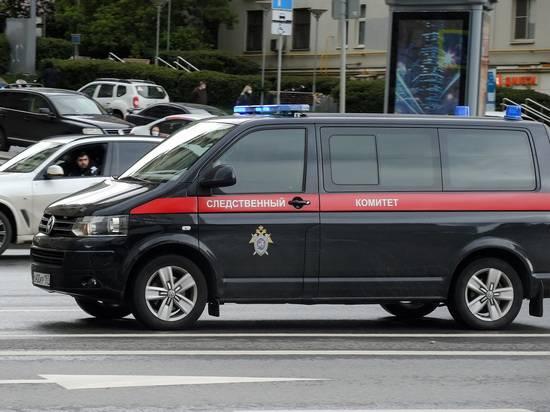 СК возбудил дело о призывах к беспорядкам после думских выборов