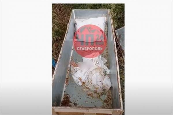 «Бирочки, как положено». Кто бросил детский гроб в лесу на Ставрополье?
