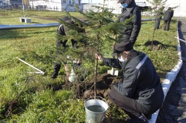 Минюст разработал законопроект о трудоустройстве осужденных у ИП