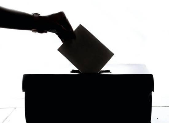 В Госдуме рассказали о зарубежных фейках про выборы в России