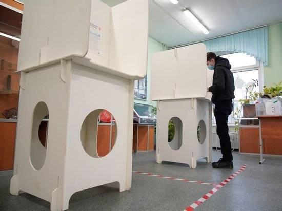 Выборы в Петербурге: раздвоение Вишневского, драки и нарушения
