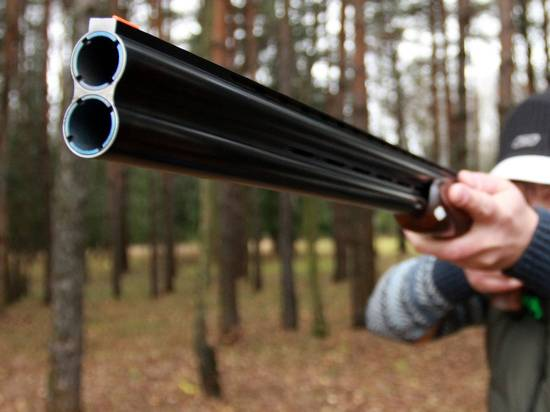 Владельцы оружия назвали минусы проекта Росгвардии о его изъятии