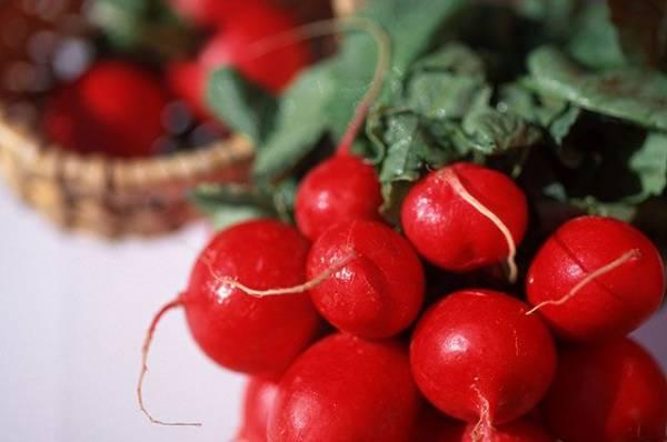 Как капуста, морковь, чеснок и лук защитят от рака?