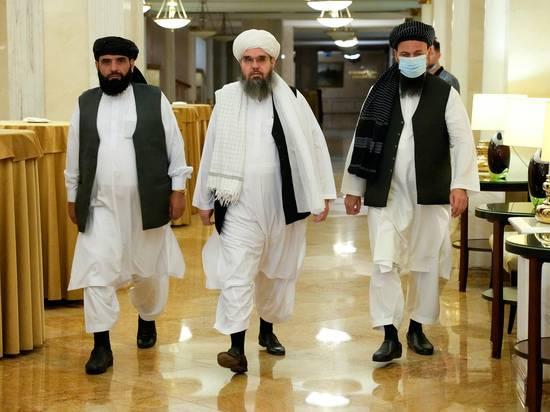 Организация приезда талибов в Москву выглядела странно